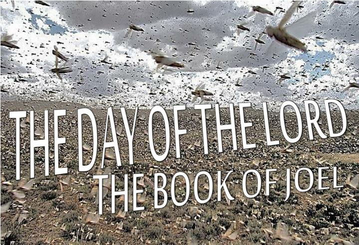 the day of the lord n.