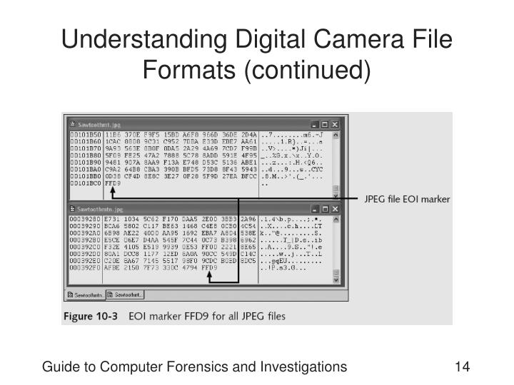 Understanding Digital Camera File Formats (continued)