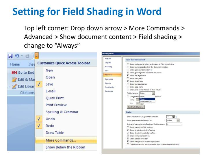 Setting for Field Shading in Word