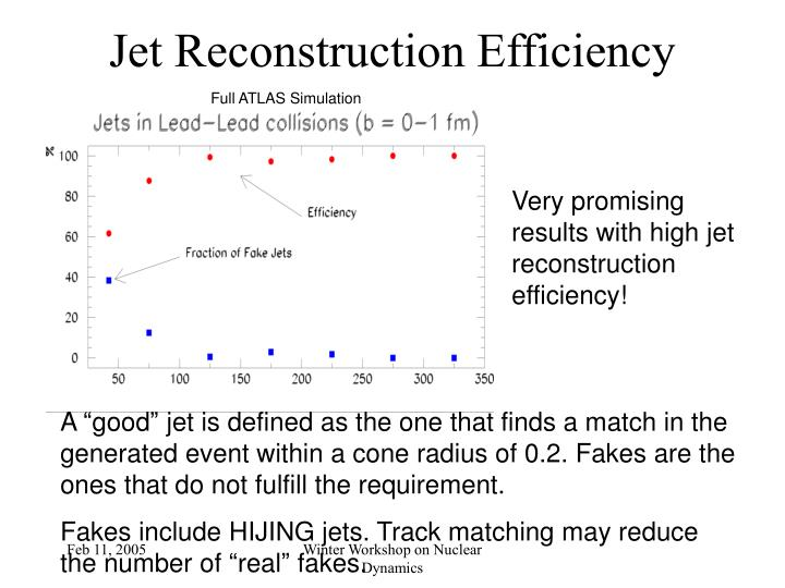 Jet Reconstruction Efficiency