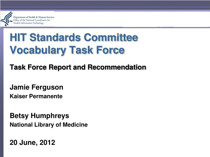 Hit standards committee vocabulary task force