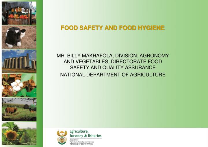 food safety and food hygiene n.