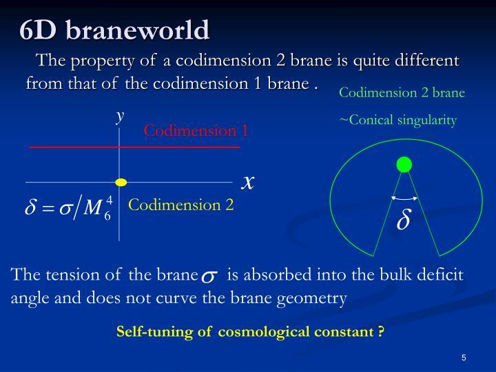 Codimension 2 brane