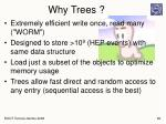 why trees1