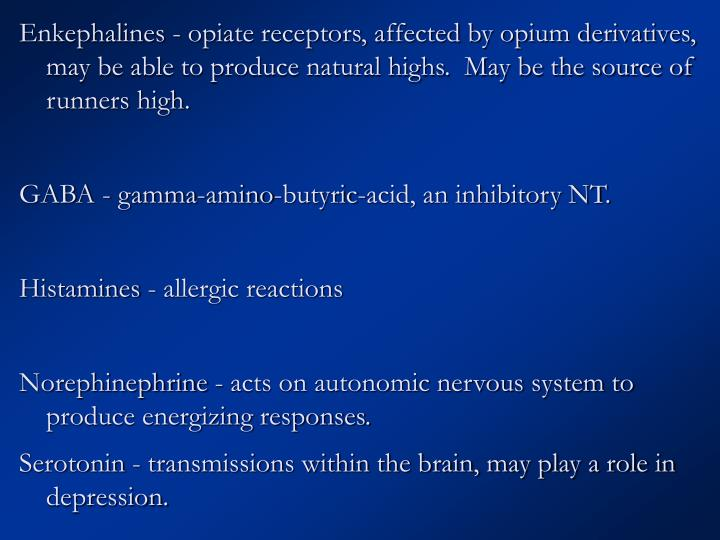 Enkephalines - opiate receptors, affected by opium derivatives, may be able to produce natural highs.  May be the source of runners high.