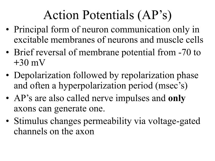 Action Potentials (AP's)