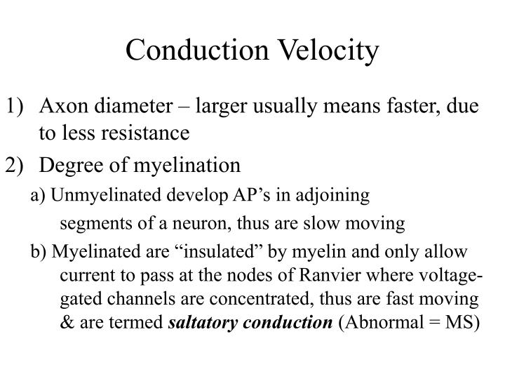 Conduction Velocity