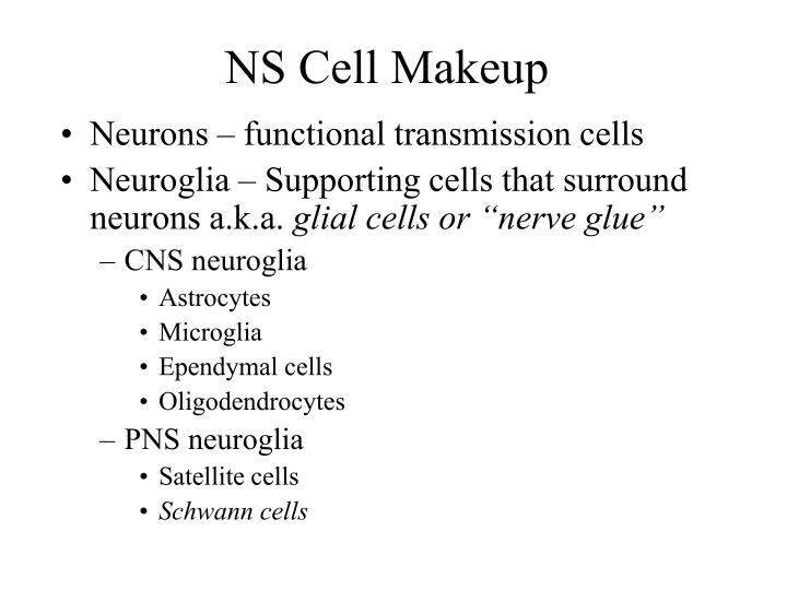 NS Cell Makeup
