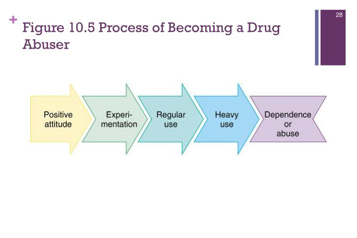Figure 10.5 Process of Becoming a Drug Abuser