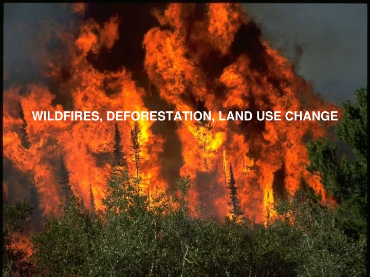 wildfires deforestation land use change n.