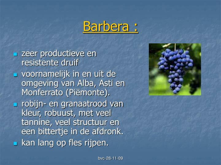 Barbera :