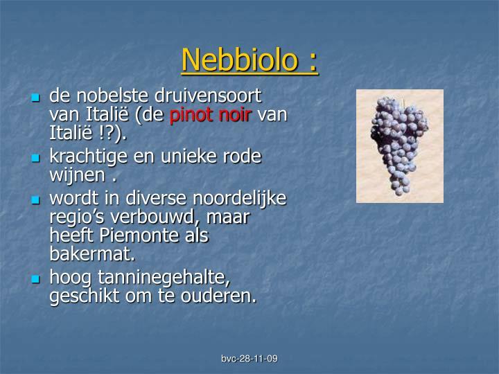 Nebbiolo :