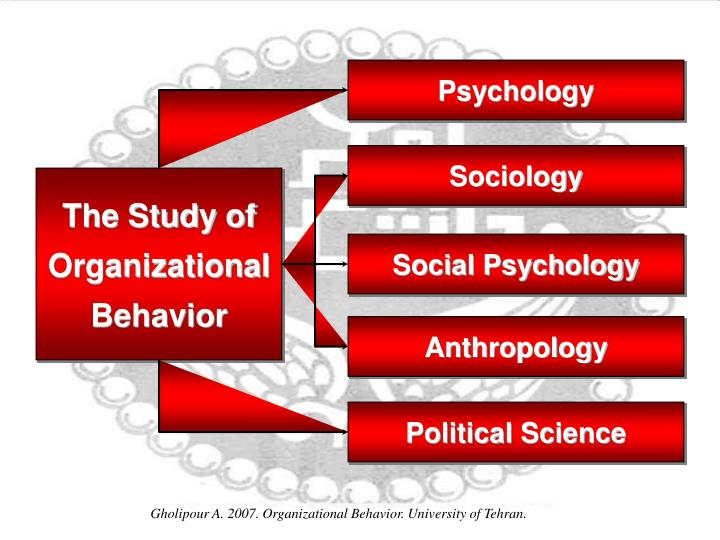 organizational behavior and the sociology of Organizational behavior (ob) or organisational behaviour is the study of human behavior in organizational settings, the interface between human behavior and the.