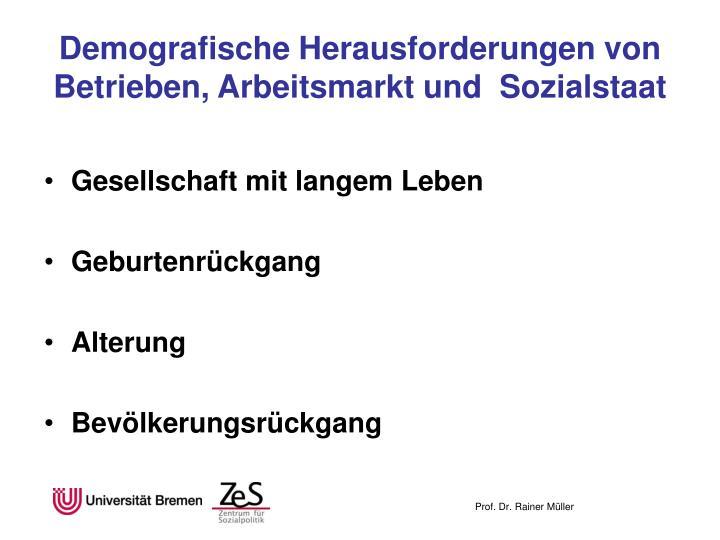 Demografische herausforderungen von betrieben arbeitsmarkt und sozialstaat