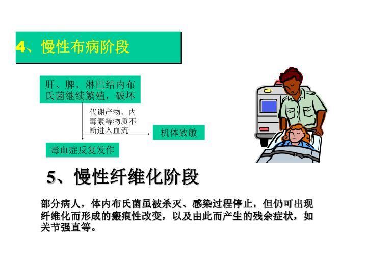 4、慢性布病阶段