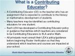 what is a contributing educator