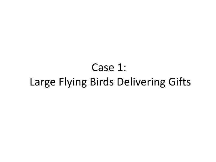 Case 1 large flying birds delivering gifts