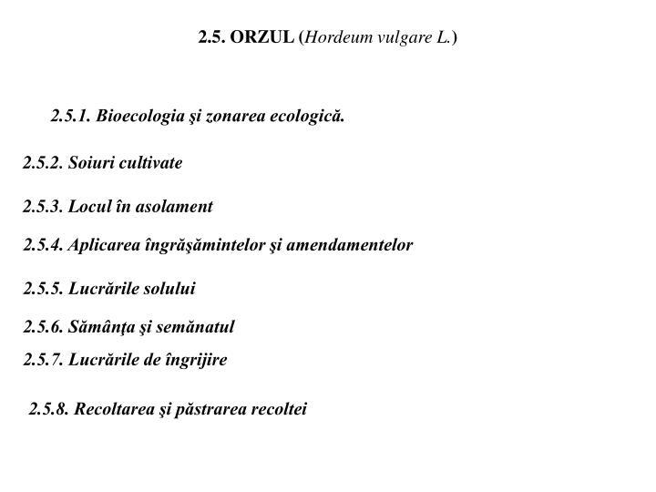 2.5. ORZUL (