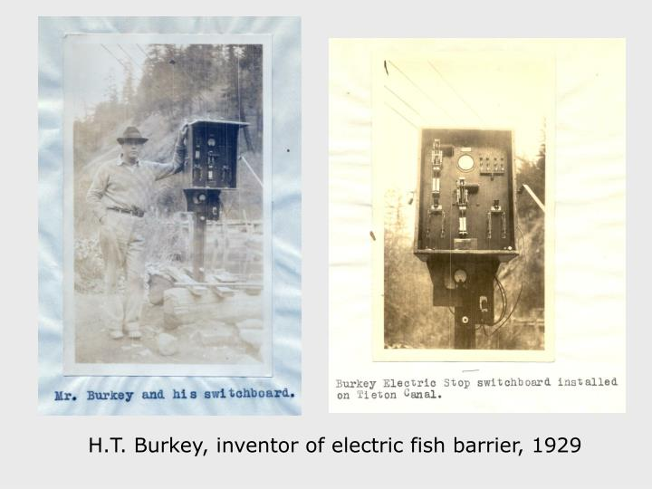 H.T. Burkey, inventor of electric fish barrier, 1929