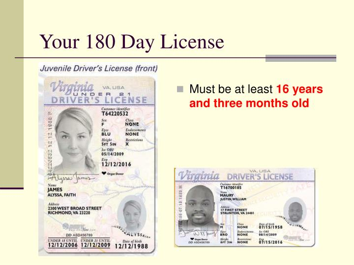 Your 180 Day License
