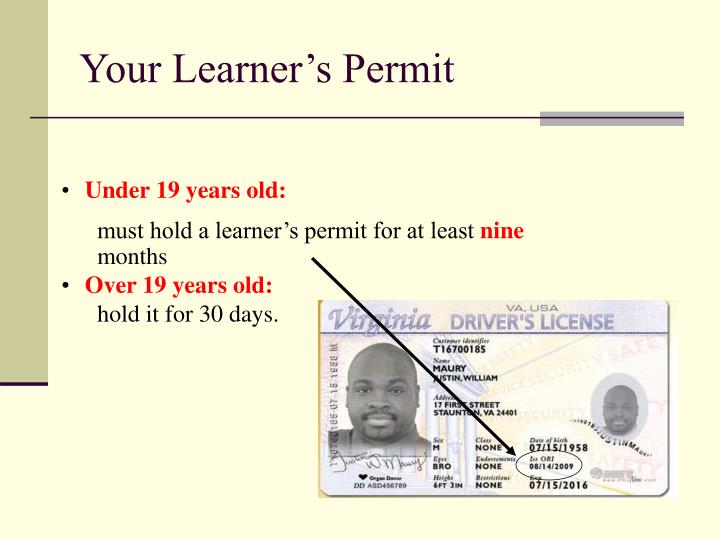 Your Learner's Permit
