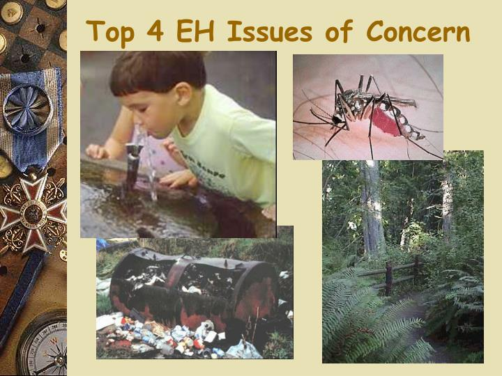 Top 4 EH Issues of Concern