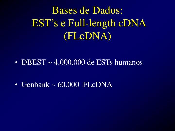Bases de Dados:
