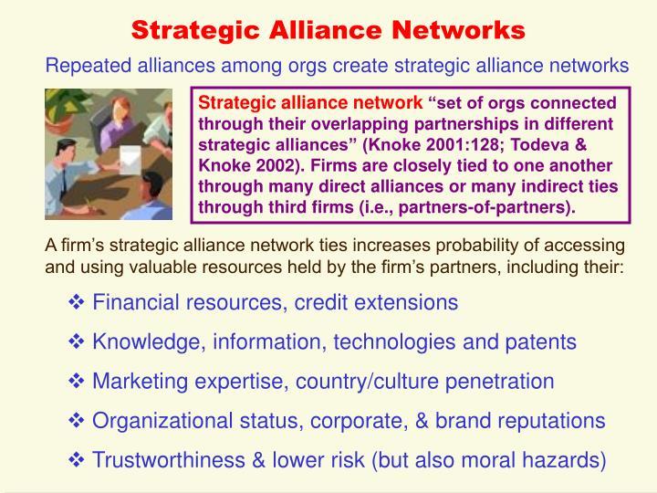 Strategic Alliance Networks