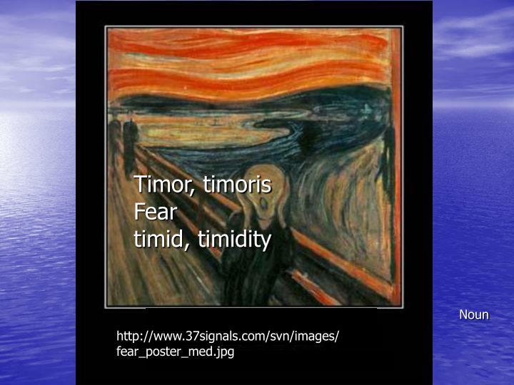 Timor, timoris
