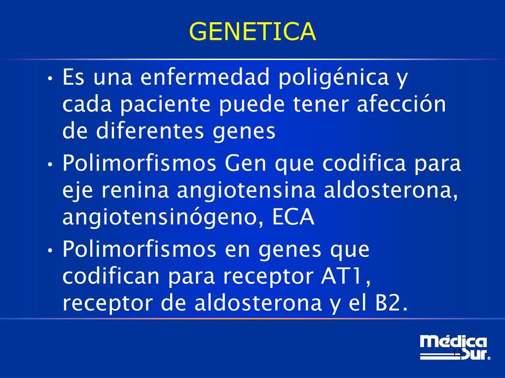 PPT - Hipertensión Arterial Sistémica Fisiopatología y..