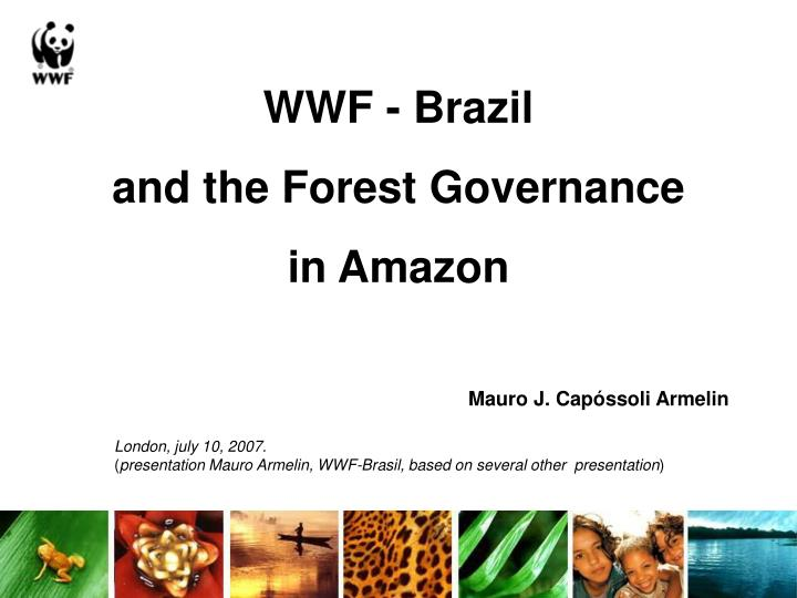 wwf brazil and the forest governance in amazon