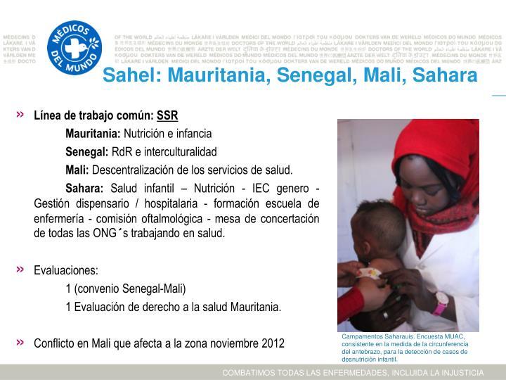 Sahel: Mauritania, Senegal, Mali, Sahara