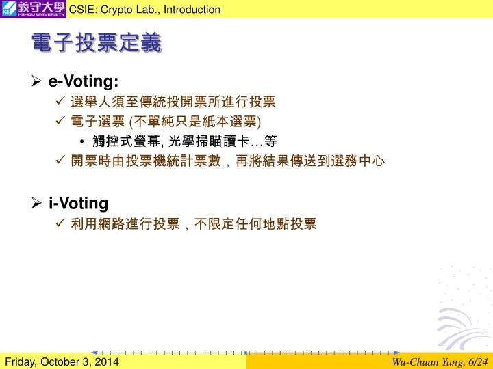 電子投票定義