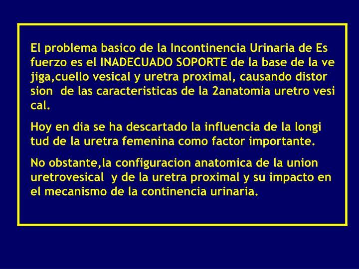 PPT - Radiologia de la Incotinencia Urinaria PowerPoint Presentation ...