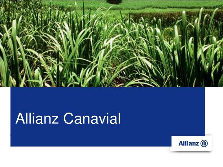 Allianz Canavial