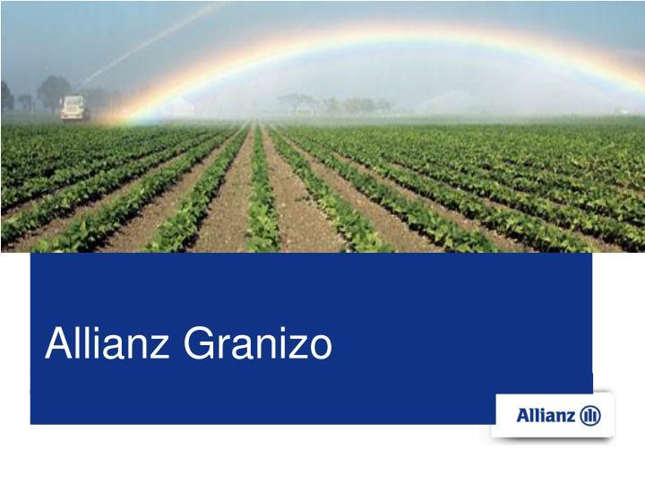 Allianz Granizo