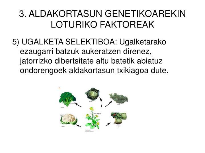 3. ALDAKORTASUN GENETIKOAREKIN LOTURIKO FAKTOREAK