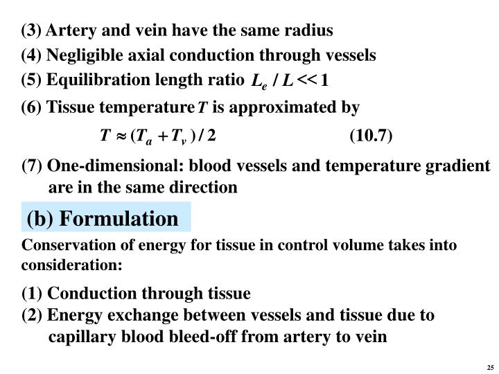 (3) Artery and vein have the same radius