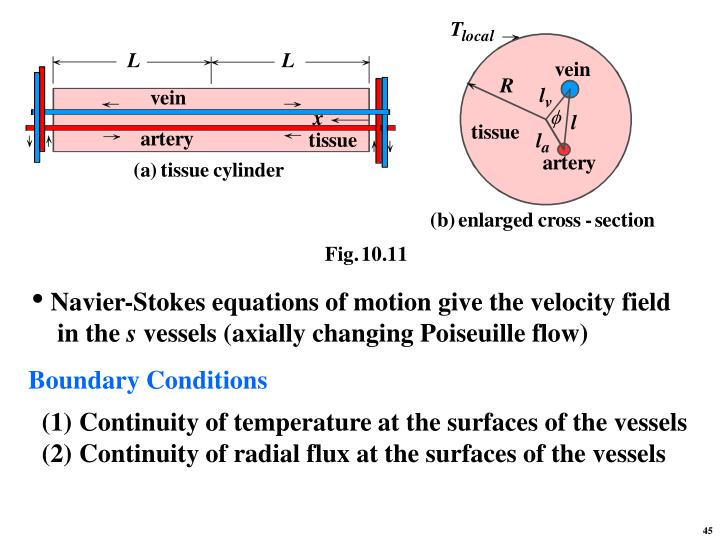 Navier-Stokes equations of motion give the velocity field