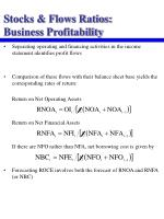 stocks flows ratios business profitability