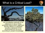 what is a critical load