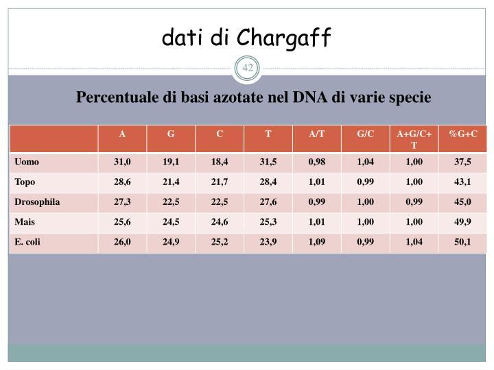 dati di Chargaff