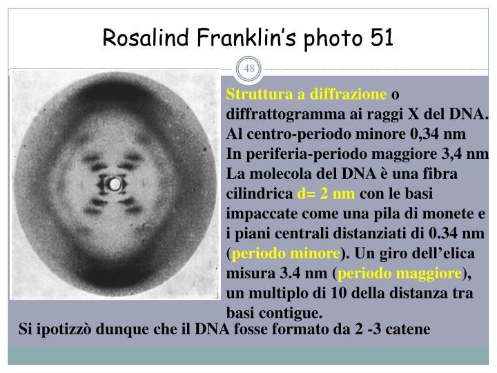 Rosalind Franklin's photo 51