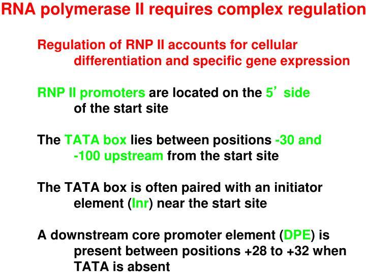 RNA polymerase II requires complex regulation
