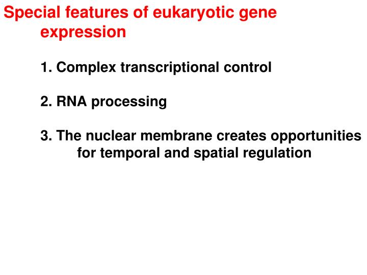 Special features of eukaryotic gene expression