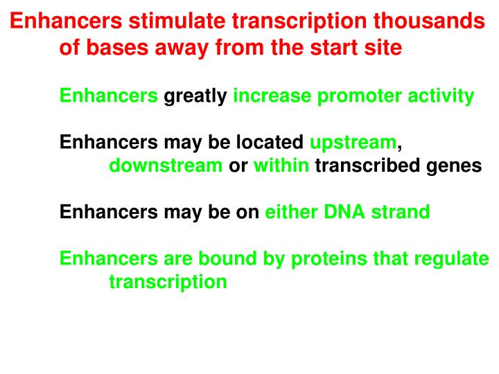 Enhancers stimulate transcription thousands of bases away from the start site