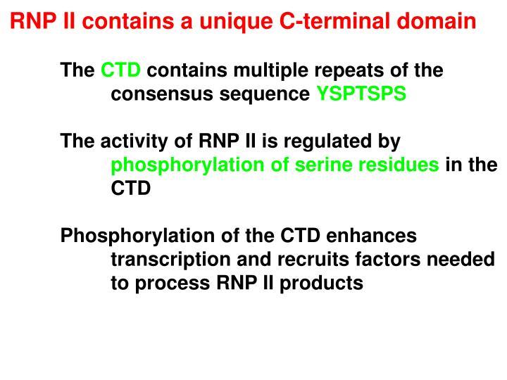 RNP II contains a unique C-terminal domain