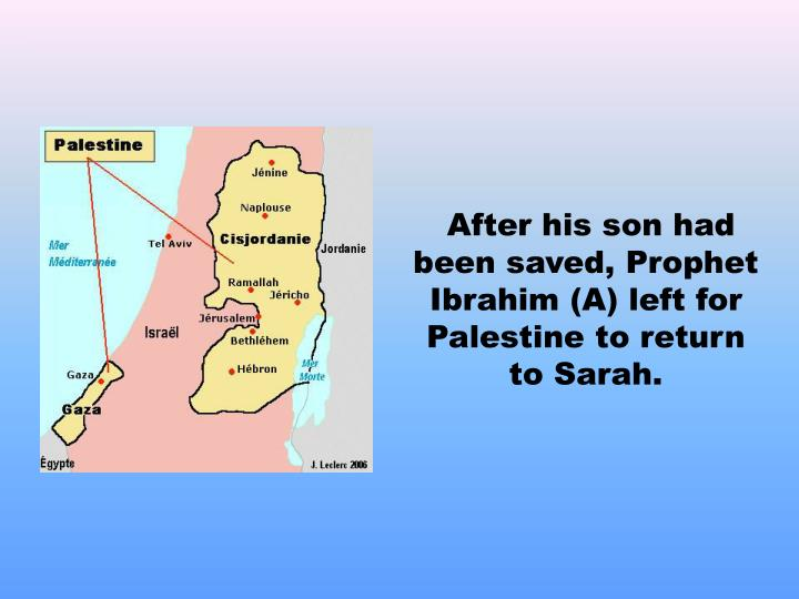 After his son had been saved, Prophet Ibrahim (A) left for Palestine to return to Sarah.