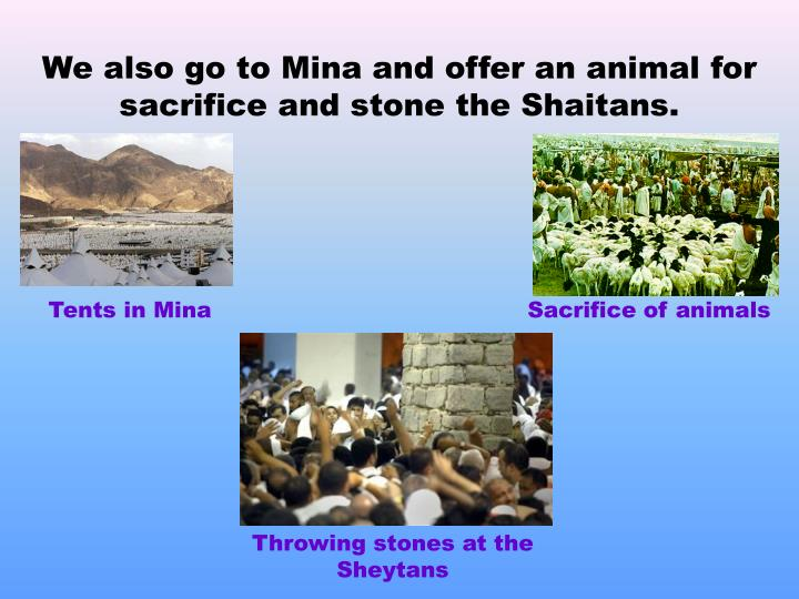 We also go to Mina and offer an animal for sacrifice and stone the Shaitans.