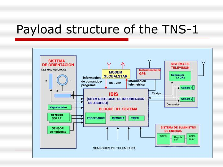 Payload structure of the tns 1